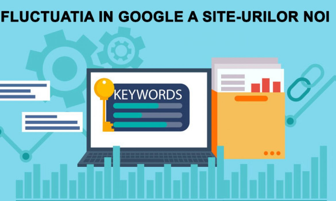 Fluctuatia in Google a site-urilor noi