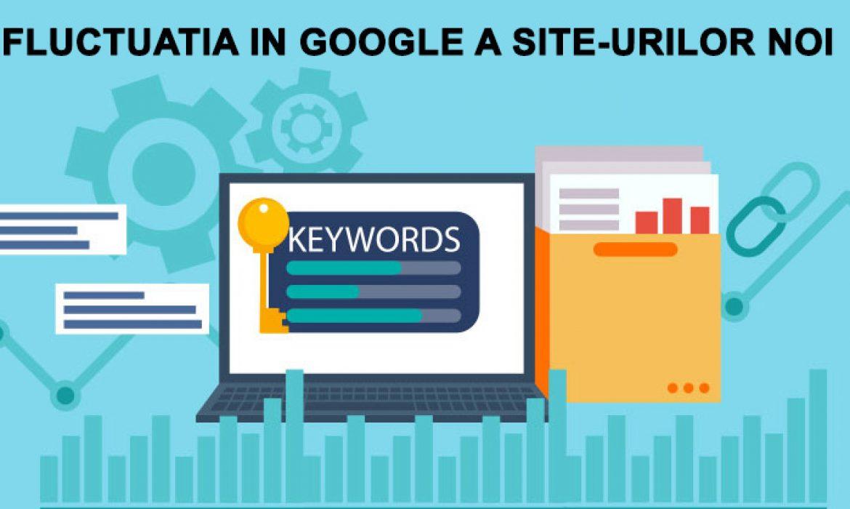 Fluctuatia in Google a site-urilor noi